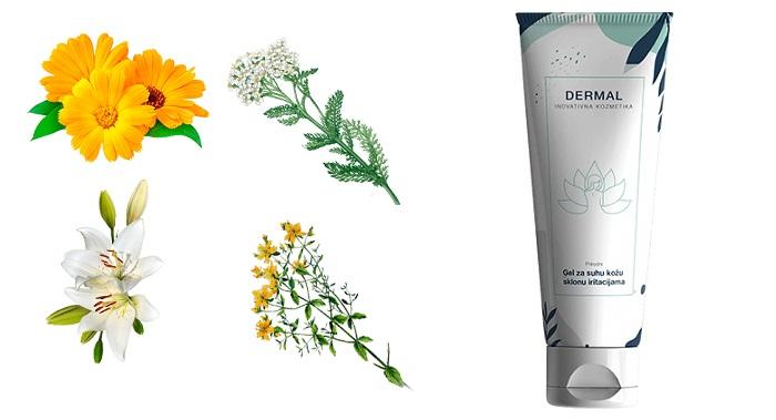 Dermal od psorijaze: lijepa zdrava koža bez svrbeža i ljuštenja!
